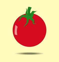 Tomato vegetable icon vector image vector image