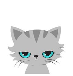Angry cat cartoon cute grumpy cat vector