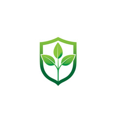 creative eco leaves plant shield logo design vector image