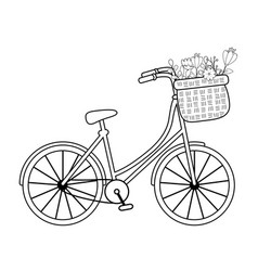 cute bicycle with basket and floral decoration vector image