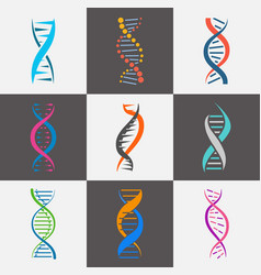 Dna strand icon flat set vector