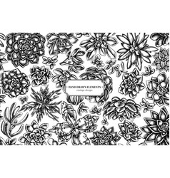 Floral design with black and white succulent vector