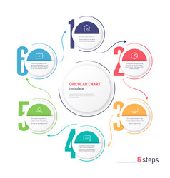 infographic numbered process circular chart vector image