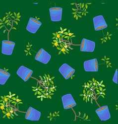 plant growing lemon tree in pot seamless pattern vector image