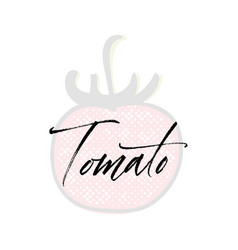 tomato word on background fruit web vector image