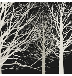 Trees on black background vector