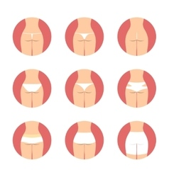 Various types of women panties back view vector