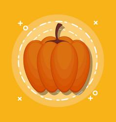 colorful pumpkin autumn symbol vector image
