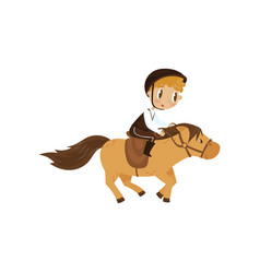 cute litlle boy riding a horse equestrian sport vector image
