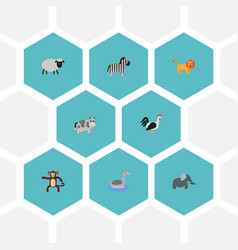 Flat icons waterbird trunked animal wildcat and vector
