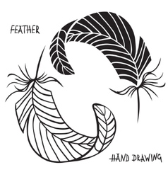 Hand drawn silhouettes of feathers in black and vector image