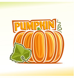 Pumpkin still life vector