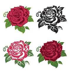 set multicolored roses vector image