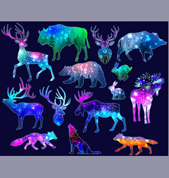 Silhouettes animals with space galaxy vector