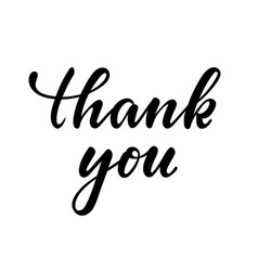 thank you hand drawn calligraphy and brush pen vector image