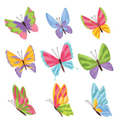 watercolor colors butterflies isolated on white vector image