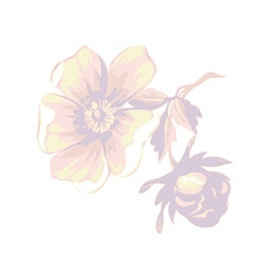 Branch with flowers roses isolated Vintage grunge vector image vector image