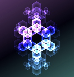 Abstract snowflake decorative background vector image