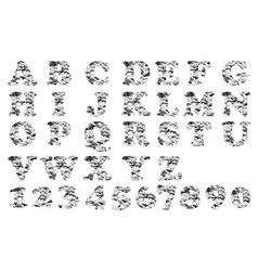 alphabet military grey vector image