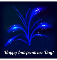 firework in honor independence day vector image