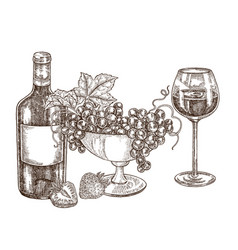 hand drawn bottle wine with grapes and vector image