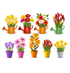 mega collection spring and summer colorful vector image