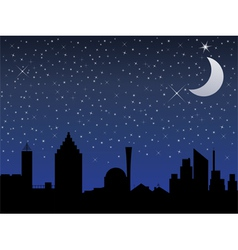 night in the city vector image