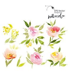 Watercolor cet vector image