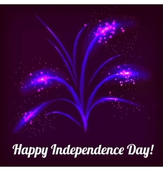 firework in honor of Independence Day vector image vector image
