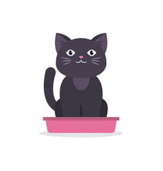 black cat sitting in litter box isolated on white vector image