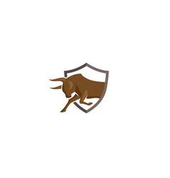 creative logo brown bull shield design symbol vector image