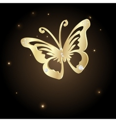 Gold Lace butterfly on brown background vector image