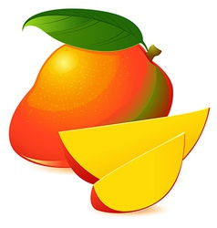 Icon of Ripe exotic mango with two slices vector image