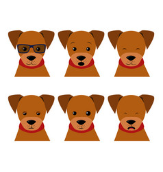set isolated emotion puppy dog collection vector image