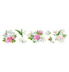 set lovely bouquets vector image