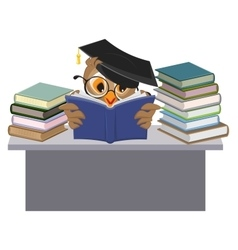 Owl in mortarboard reading book vector image
