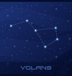 constellation volans flying fish night star sky vector image