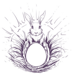 easter bunny in grass to lay an egg in nest vector image