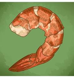 engraving shrimp retro vector image