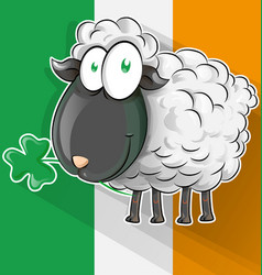 Irish shepp cartoon on flag vector