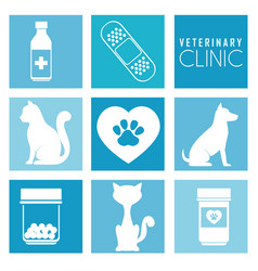 pet and animal shop vector image