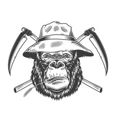 Serious gorilla head in panama hat vector