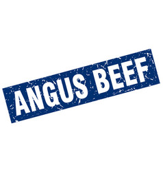Square grunge blue angus beef stamp vector