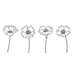 wildflowers set vector image