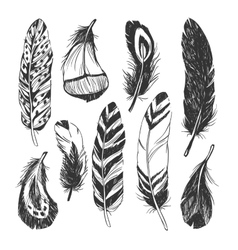Feather set in Native American Indian style vector image vector image