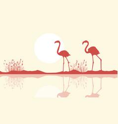 flamingo on riverbank scene silhouette vector image