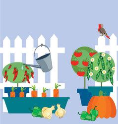 garden of vegetables vector image