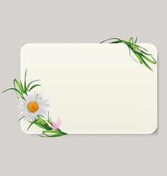 label camomile vector image