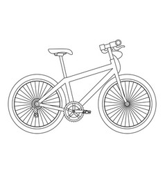 sport bicycle isolated icon vector image