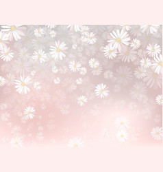 spring background with chamomile flowers vector image